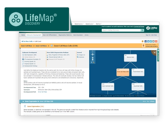 LifeMap Discovery<sup>®</sup>
